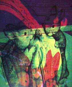 Diane Holland bunny detail of Marbu print