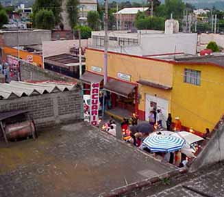 View of Procession Xochimilco