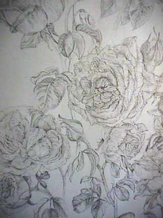 Joan Berg Victor drawing detail  Old Roses