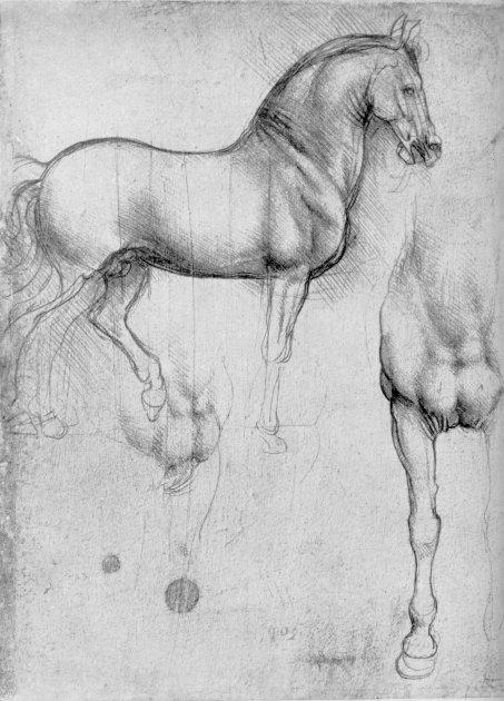 Leonardo da Vinci silverpoint drawing