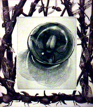 Lisa DINHOFER print Contained Environment 3
