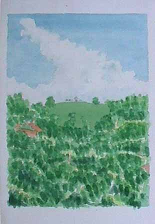 Vieques Hilltop watercolor painting James Burnett