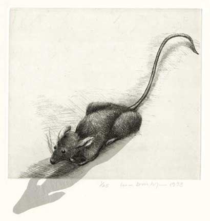lisa dinhofer etching Mouse