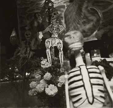 Giancoli photo Altar Day of the Dead