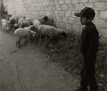 Giancoli photo Young Shepherd, Atlixco, Puebla